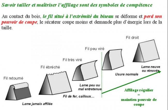 Schema secateur electrique